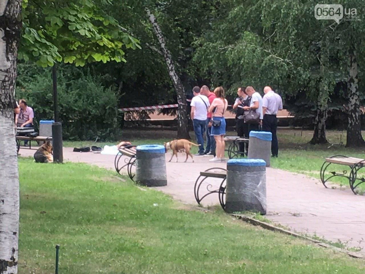 Возле мэрии Кривого Рога найдено тело мужчины с ножевыми ранениями. Рядом с убитым находится его собака, - ФОТО, ВИДЕО 18+, фото-9