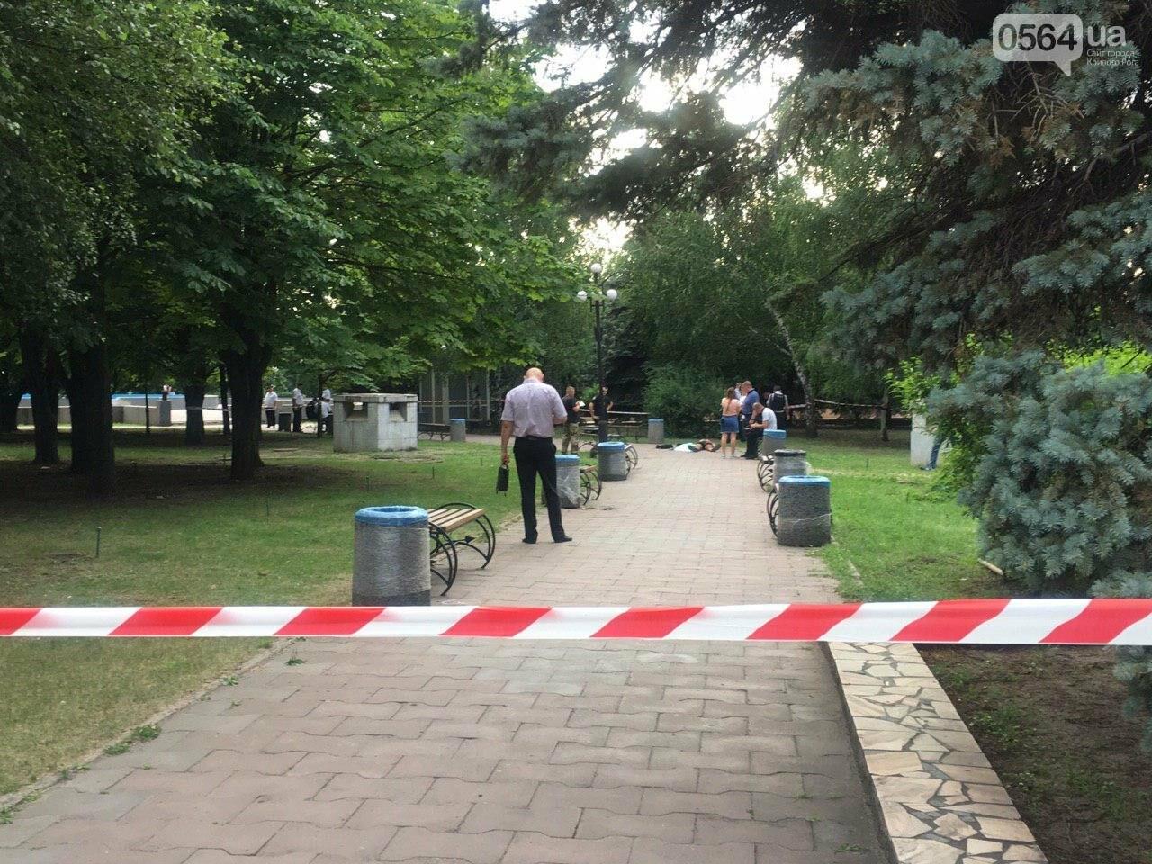 Возле мэрии Кривого Рога найдено тело мужчины с ножевыми ранениями. Рядом с убитым находится его собака, - ФОТО, ВИДЕО 18+, фото-1