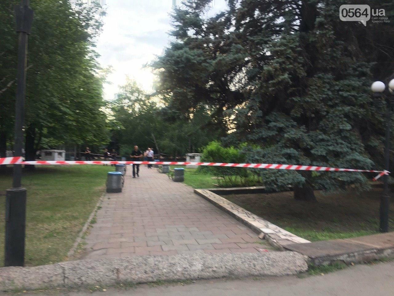 Возле мэрии Кривого Рога найдено тело мужчины с ножевыми ранениями. Рядом с убитым находится его собака, - ФОТО, ВИДЕО 18+, фото-8