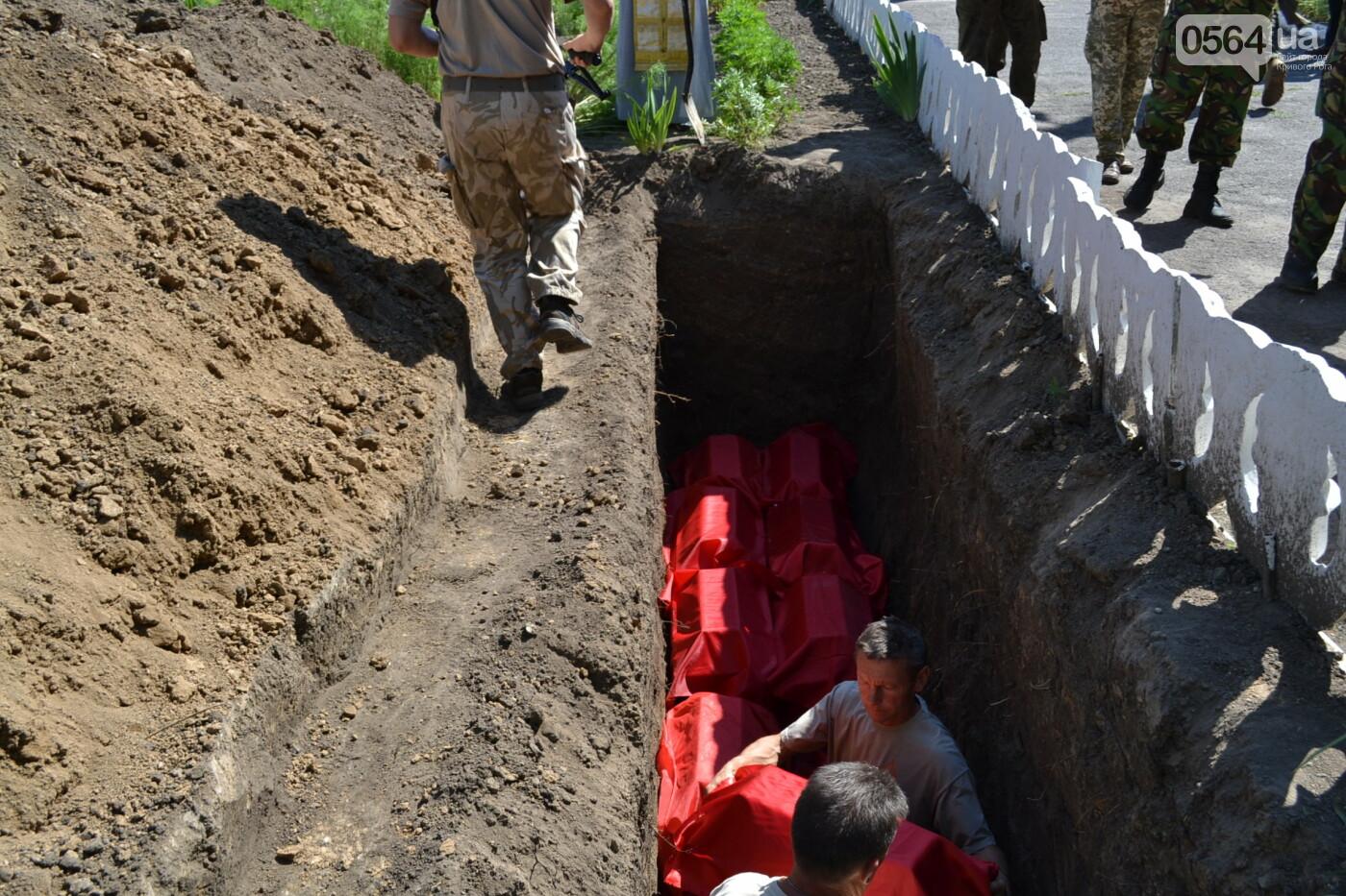 Вечная память! На Криворожье торжественно захоронили останки 43 воинов Второй мировой, - ФОТО, ВИДЕО, фото-30