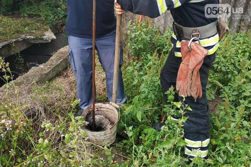 На Днепропетровщине пожарные спасли жизнь двум щенкам, - ФОТО , фото-3