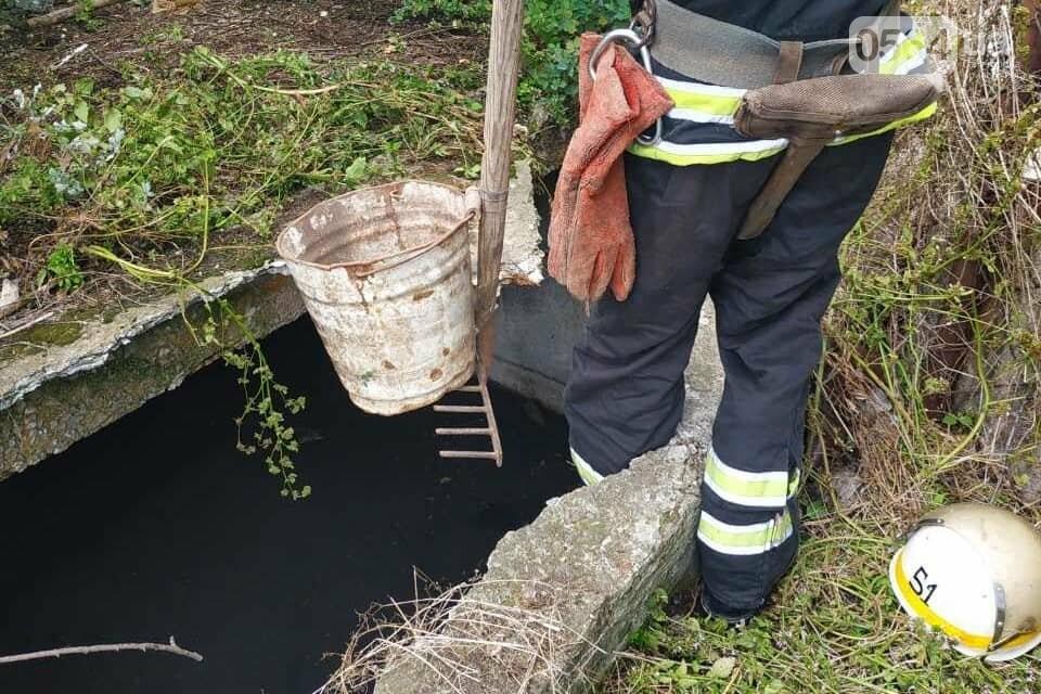 На Днепропетровщине пожарные спасли жизнь двум щенкам, - ФОТО , фото-1