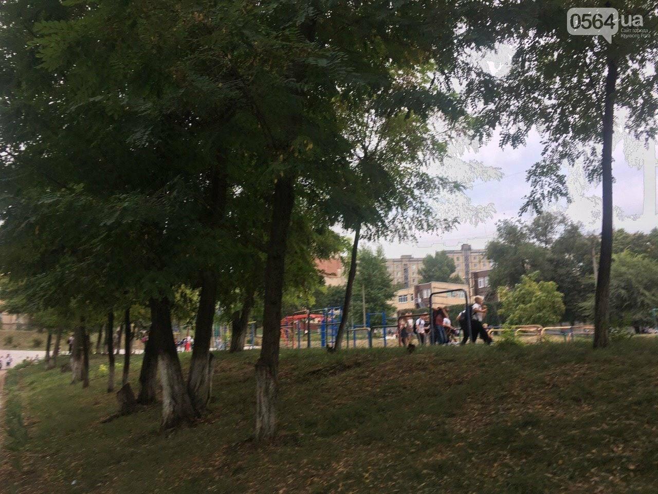 В одной из школ Кривого Рога из-за распыления неизвестного вещества срочно эвакуировали детей, - ФОТО, фото-14