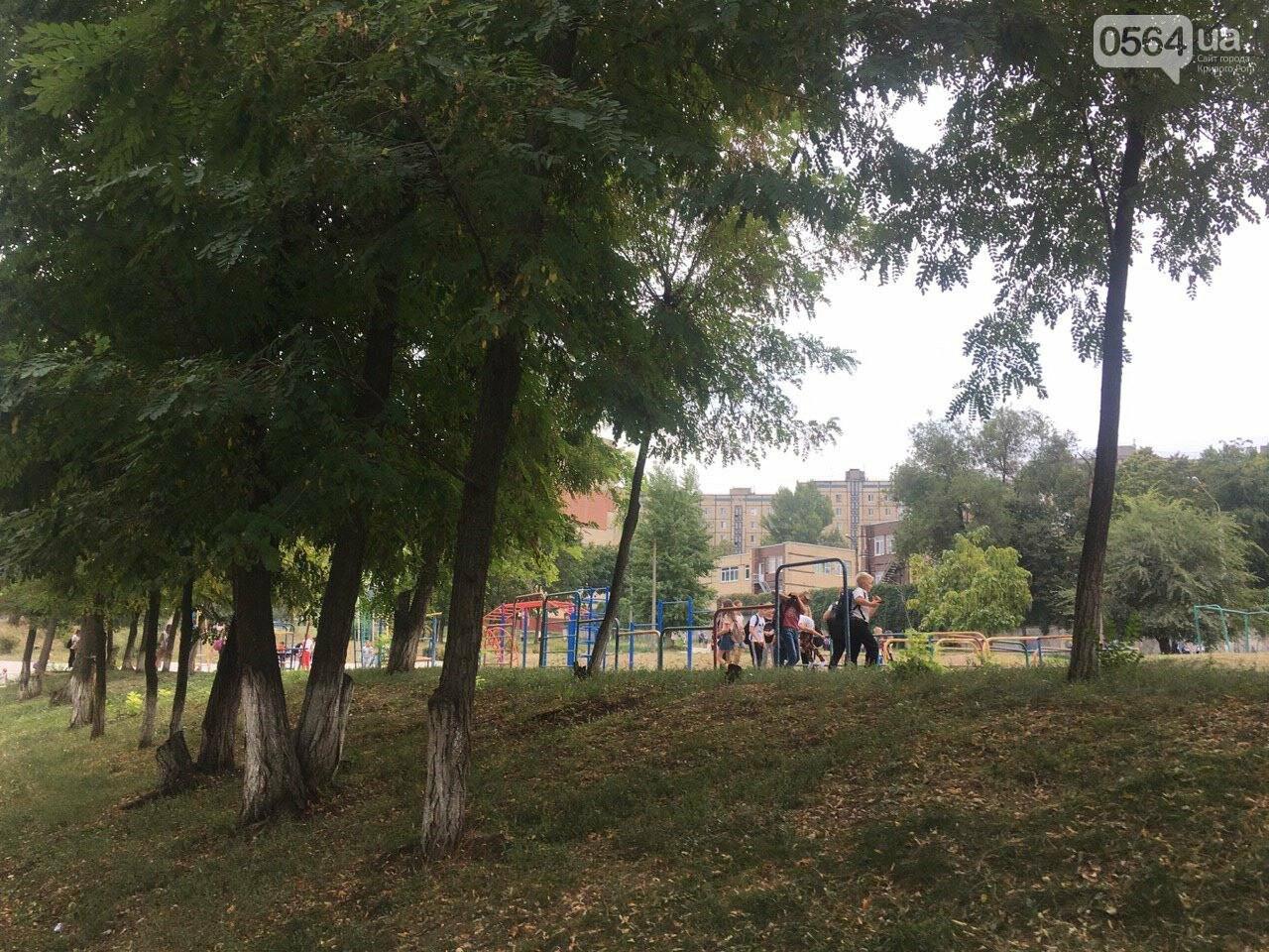 В одной из школ Кривого Рога из-за распыления неизвестного вещества срочно эвакуировали детей, - ФОТО, фото-15