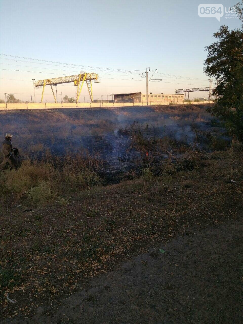 В Криворожском районе загорелась лесопосадка возле железной дороги, - ФОТО , фото-2