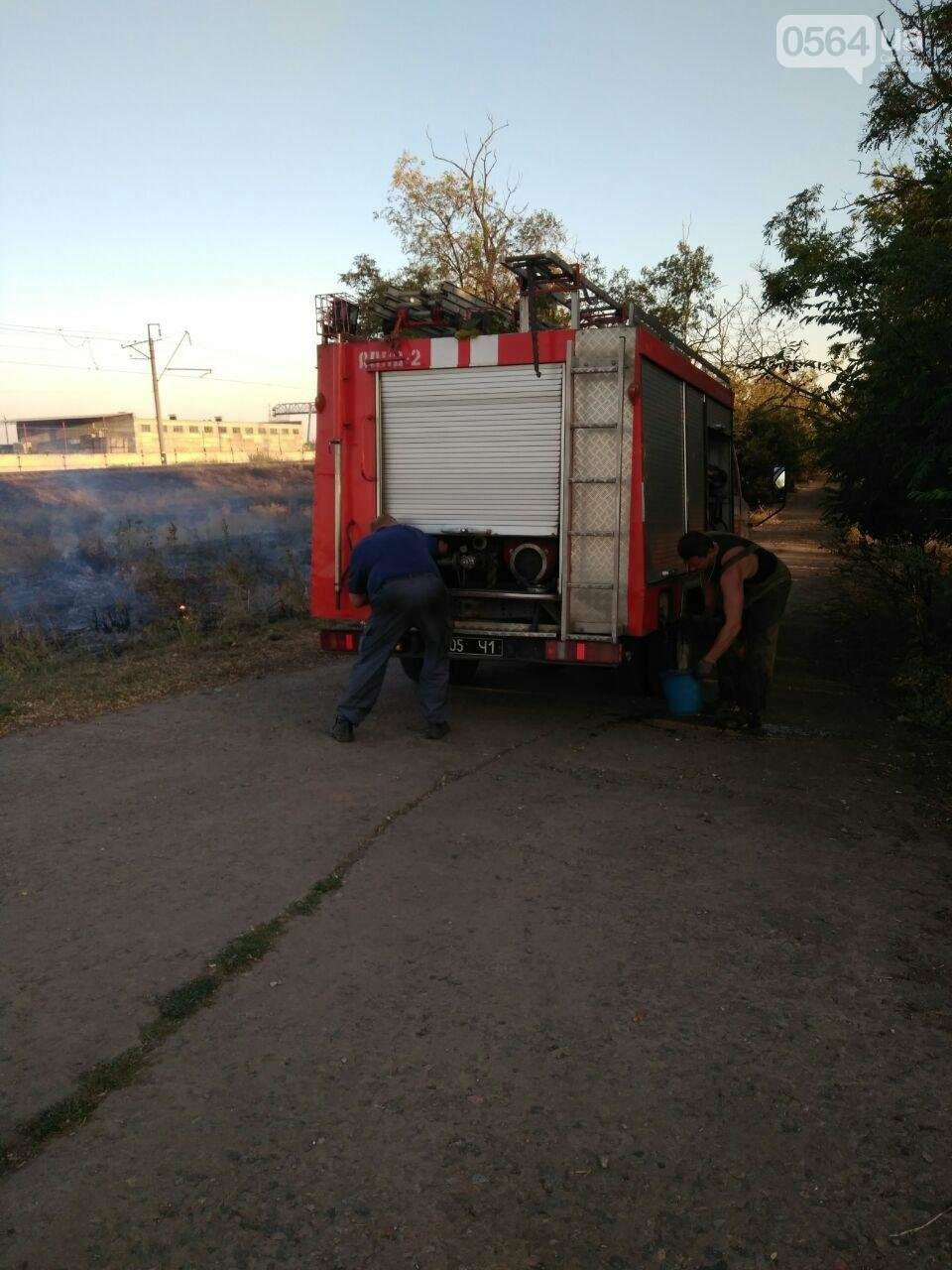 В Криворожском районе загорелась лесопосадка возле железной дороги, - ФОТО , фото-4
