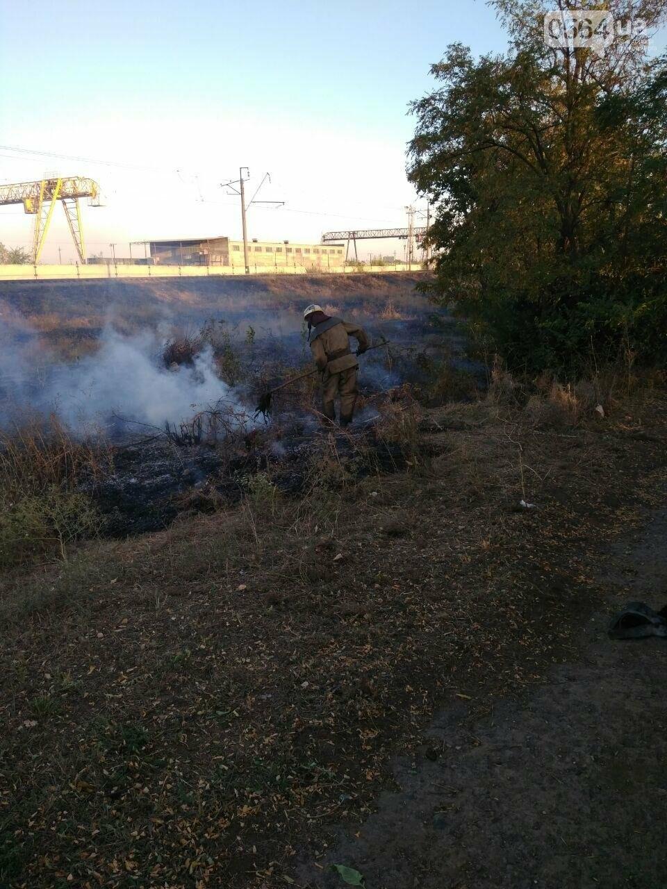 В Криворожском районе загорелась лесопосадка возле железной дороги, - ФОТО , фото-1