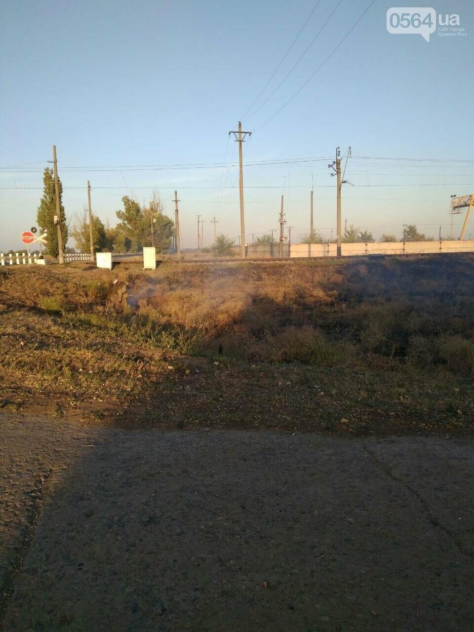 В Криворожском районе загорелась лесопосадка возле железной дороги, - ФОТО , фото-5
