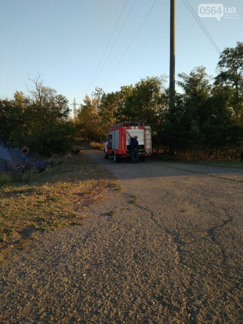 В Криворожском районе загорелась лесопосадка возле железной дороги, - ФОТО , фото-7