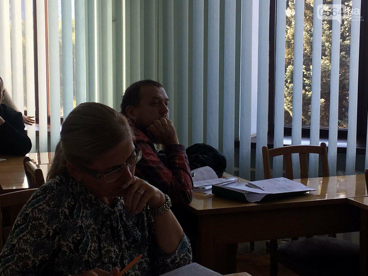 Депутаты Криворожского горсовета обсудили, куда и когда перенесут из зоны обрушения детский сад, - ФОТО , фото-11