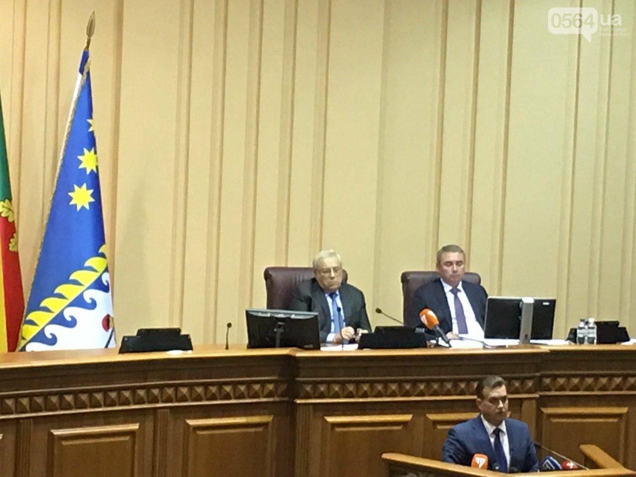 Криворожский городской совет не доверил экс-нардепу Павлову должность заместителя мэра, - ФОТО, фото-2