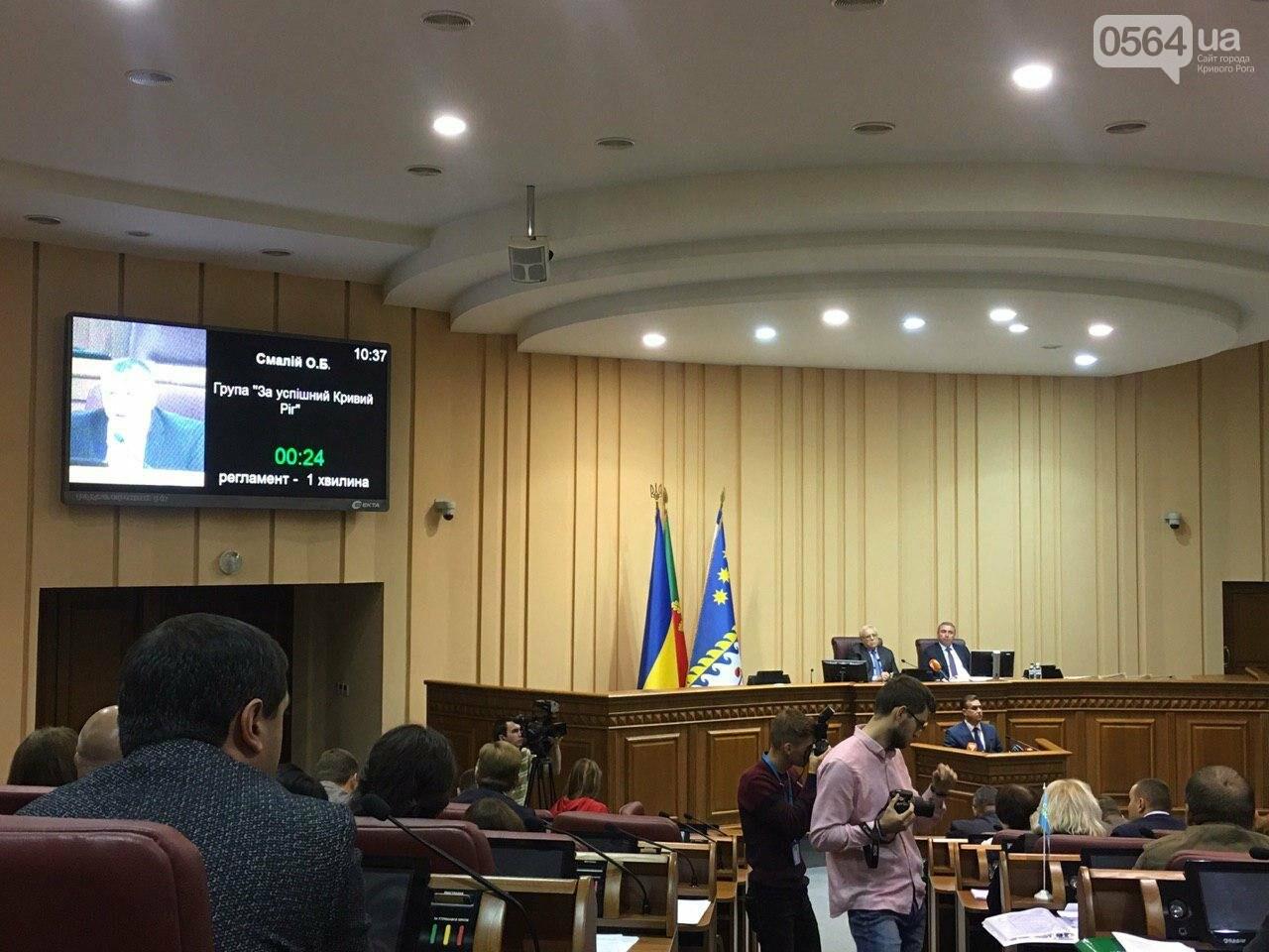 Криворожский городской совет не доверил экс-нардепу Павлову должность заместителя мэра, - ФОТО, фото-7