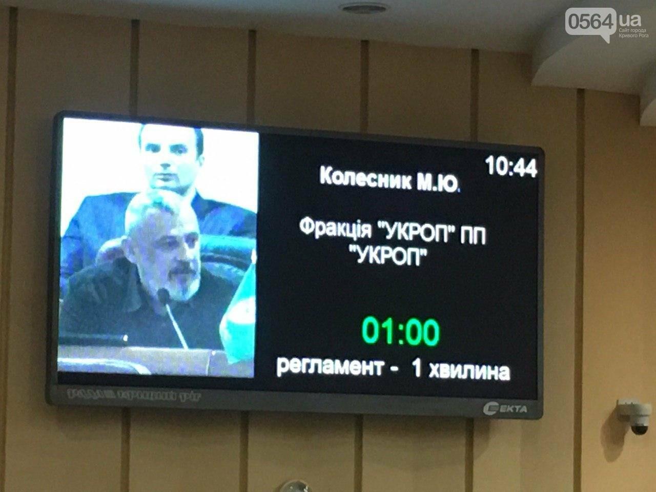 Криворожский городской совет не доверил экс-нардепу Павлову должность заместителя мэра, - ФОТО, фото-8