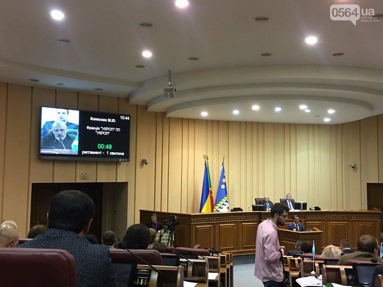 Криворожский городской совет не доверил экс-нардепу Павлову должность заместителя мэра, - ФОТО, фото-9