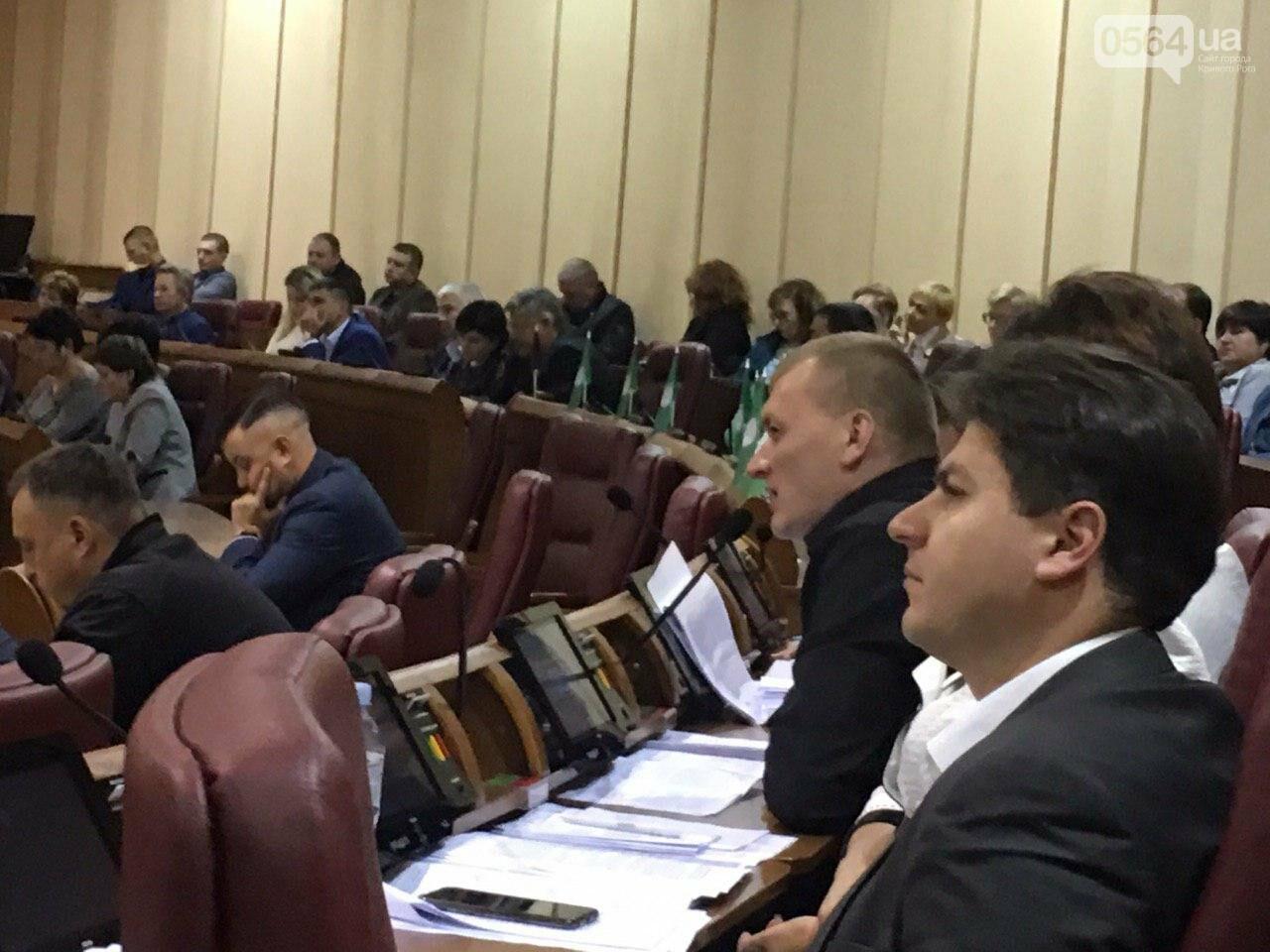 Криворожский городской совет не доверил экс-нардепу Павлову должность заместителя мэра, - ФОТО, фото-10