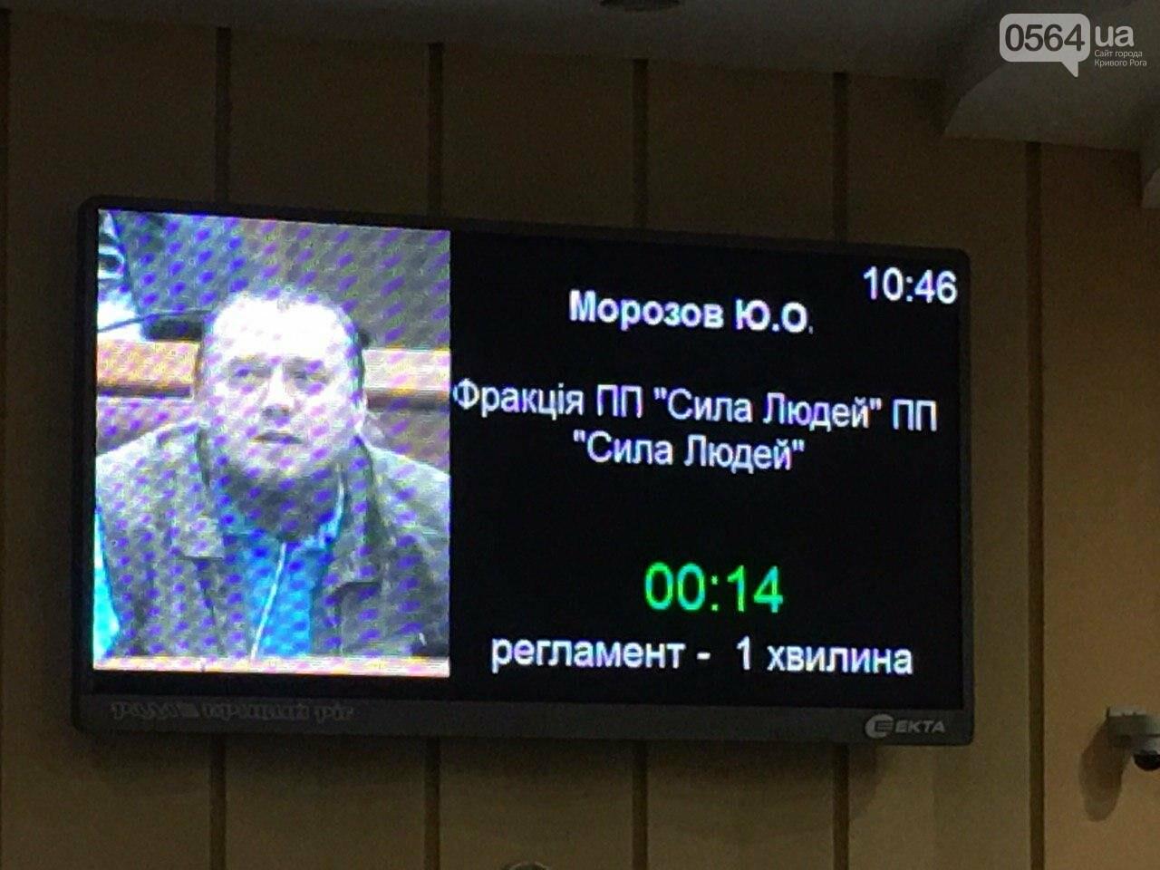 Криворожский городской совет не доверил экс-нардепу Павлову должность заместителя мэра, - ФОТО, фото-15