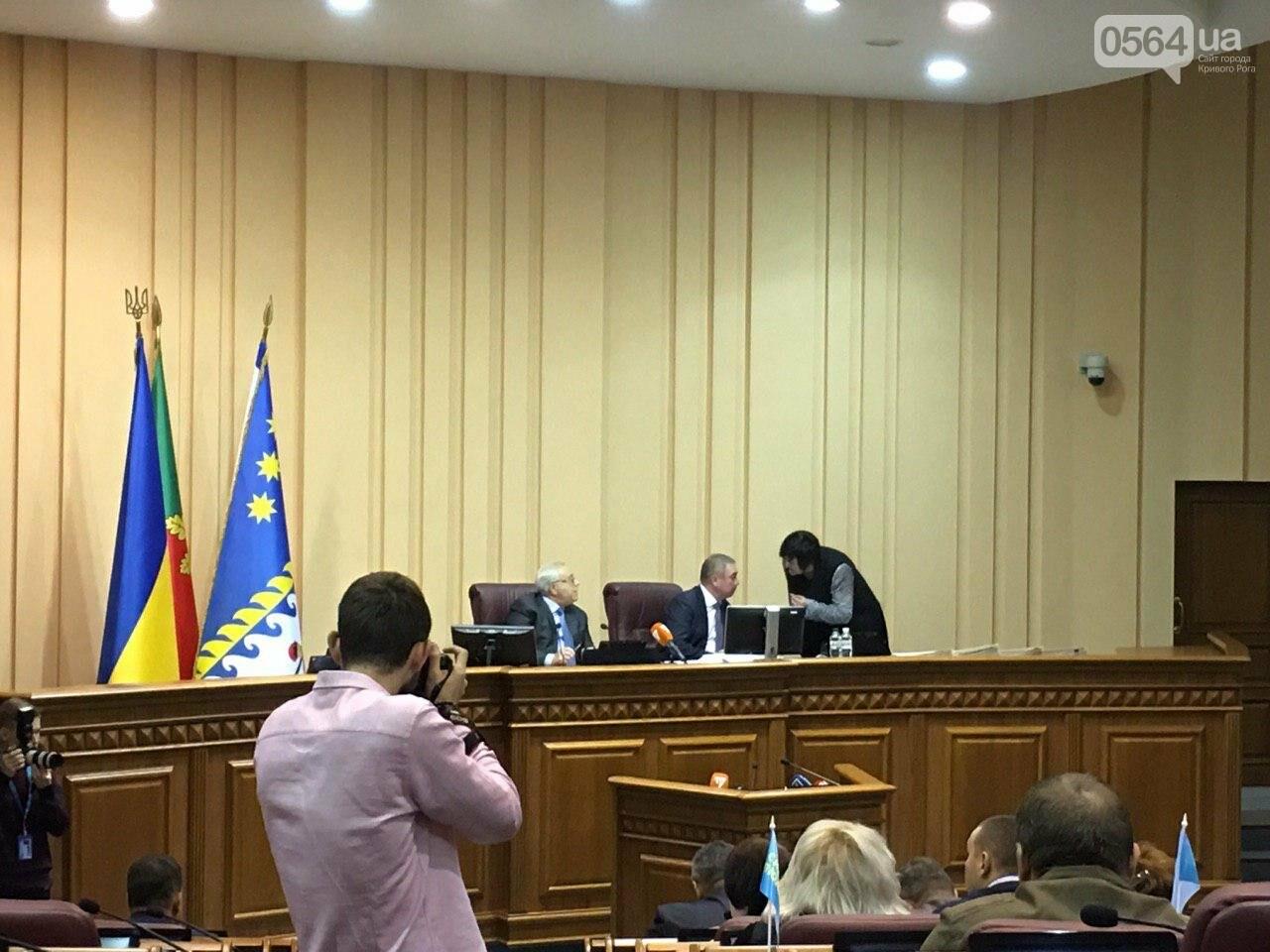 Криворожский городской совет не доверил экс-нардепу Павлову должность заместителя мэра, - ФОТО, фото-16