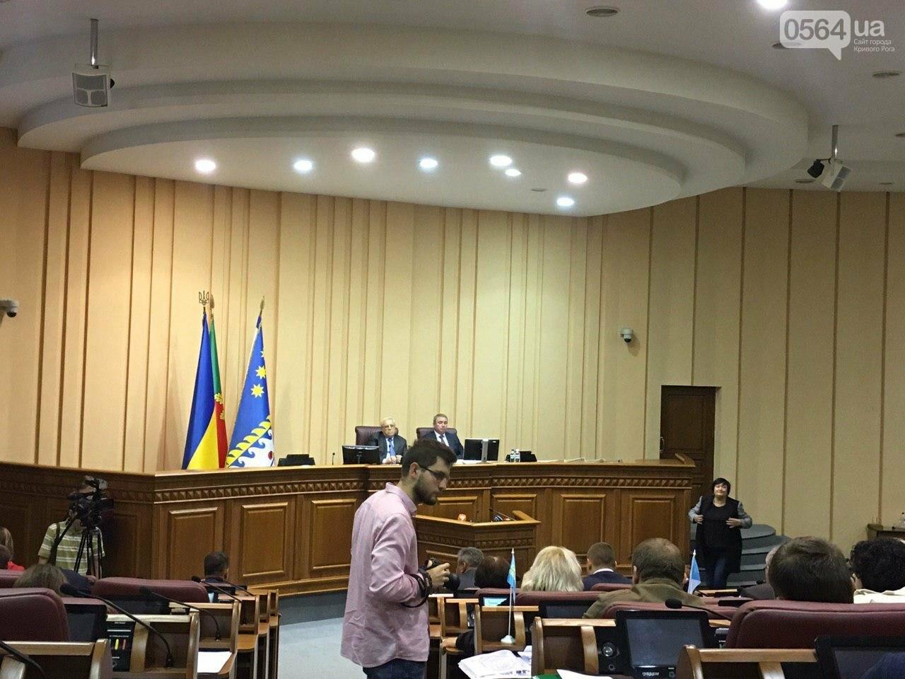 Криворожский городской совет не доверил экс-нардепу Павлову должность заместителя мэра, - ФОТО, фото-19