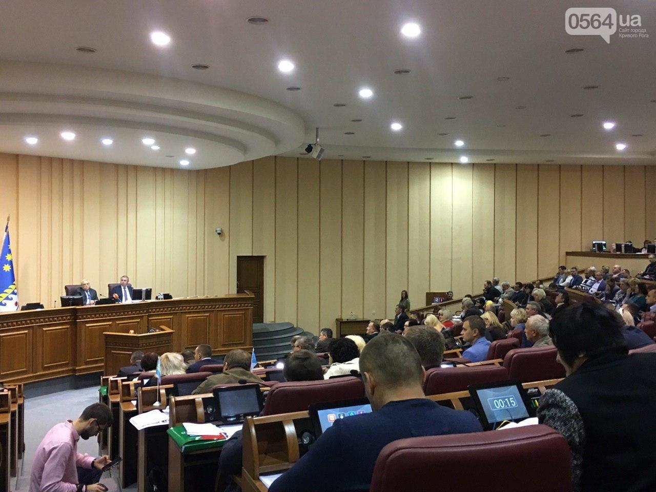Криворожский городской совет не доверил экс-нардепу Павлову должность заместителя мэра, - ФОТО, фото-23