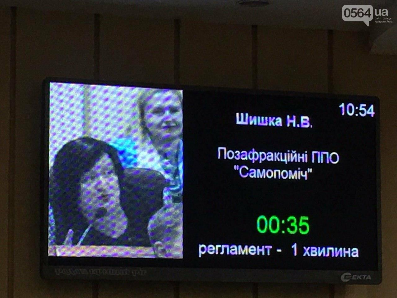 Криворожский городской совет не доверил экс-нардепу Павлову должность заместителя мэра, - ФОТО, фото-24