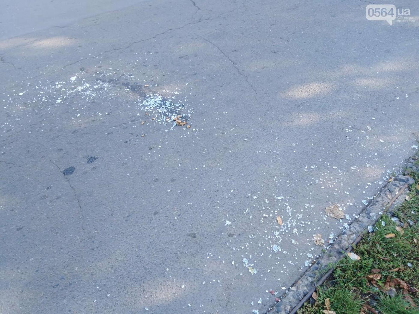 На пешеходном переходе 70-летняя криворожанка сбила 18-летнего парня, - ФОТО , фото-3