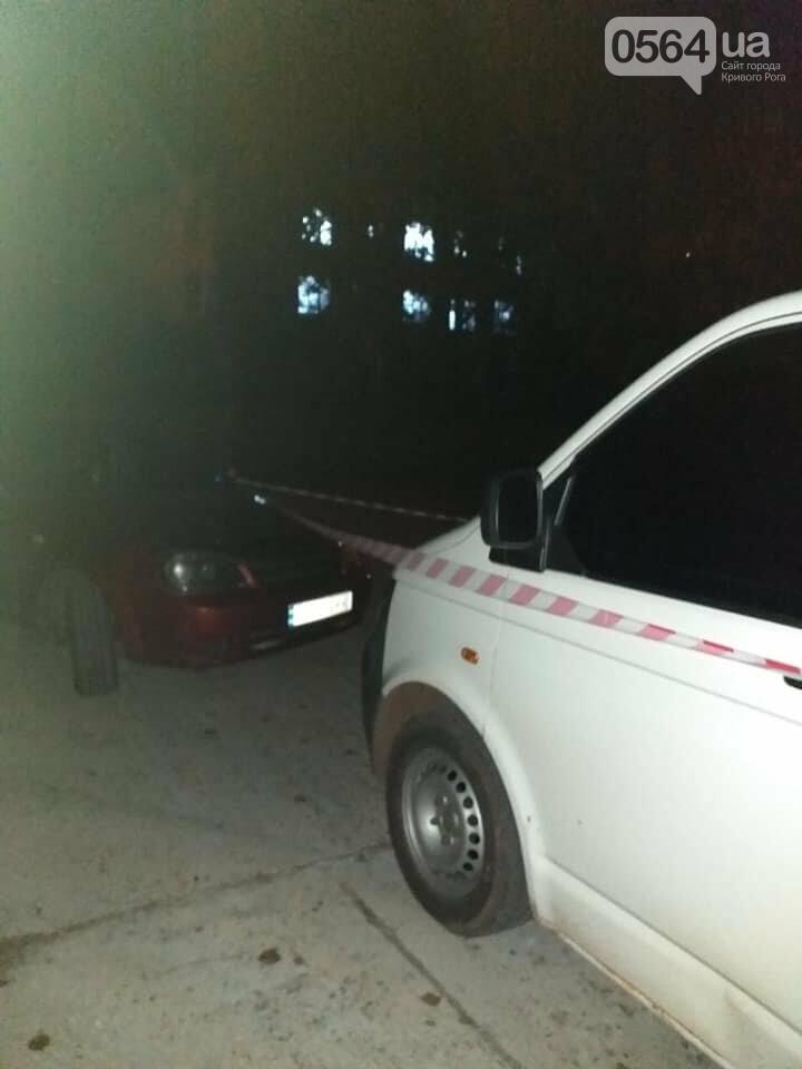 """В Кривом Роге полицейские составили админпротокол на водителя незаконной """"заправки на колесах"""", - ФОТО , фото-1"""