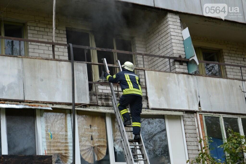В Днепре 18 спасателей тушили пожар в пансионате, - ФОТО, ВИДЕО  , фото-5