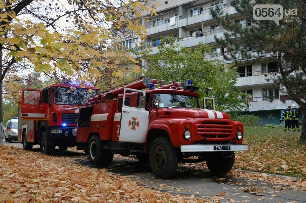 В Днепре 18 спасателей тушили пожар в пансионате, - ФОТО, ВИДЕО  , фото-2