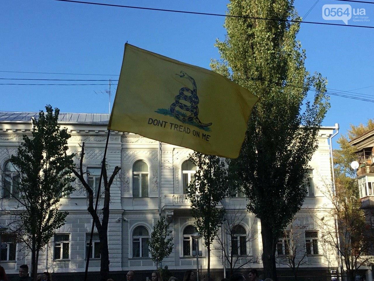 Криворожане поддержали Марш сопротивления капитуляции в Киеве, - ФОТО, ВИДЕО, ОБНОВЛЕНО, фото-18