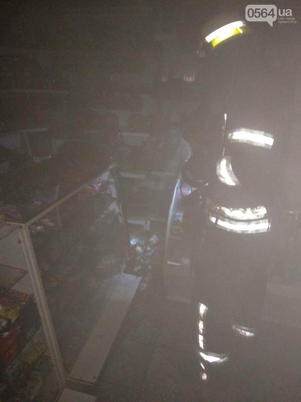 На выходных в Кривом Роге сгорели сараи, гараж и жилой дом, - ФОТО , фото-3