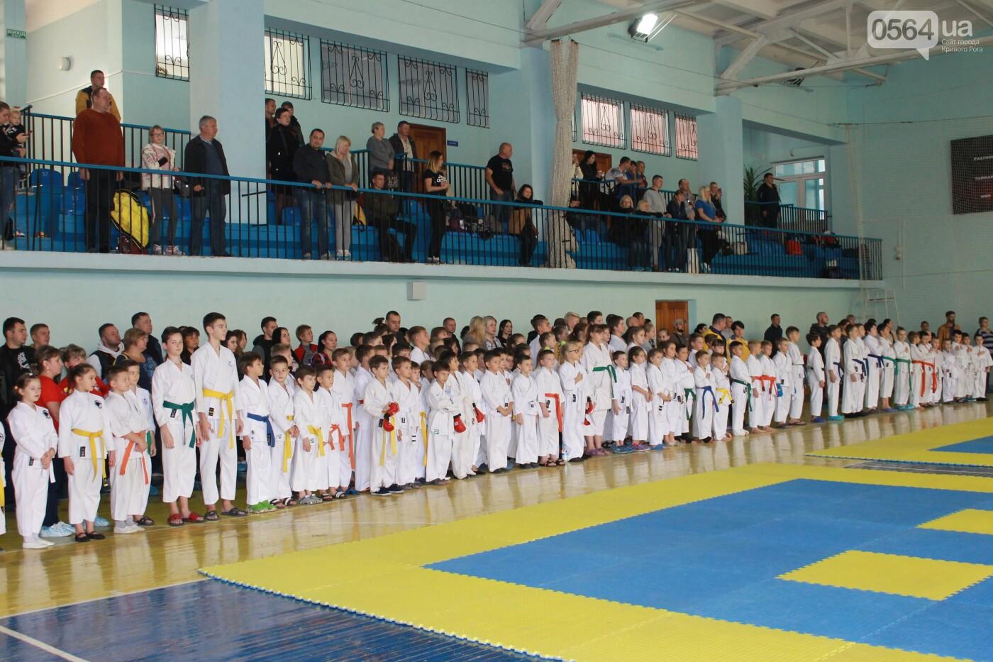 Криворожане завоевали областной Кубок по фунакоши шотокан каратэ, - ФОТО , фото-4
