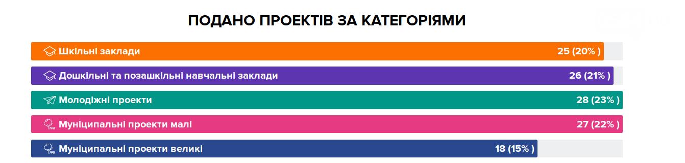 111 проектов на 59832157 гривен: стартует голосование за проекты криворожан, которые будут профинансированы из бюджета, фото-3
