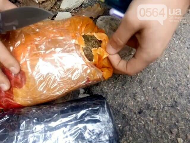 В Ингулецком районе задержали криворожанина с двумя пакетами марихуаны, - ФОТО, фото-2