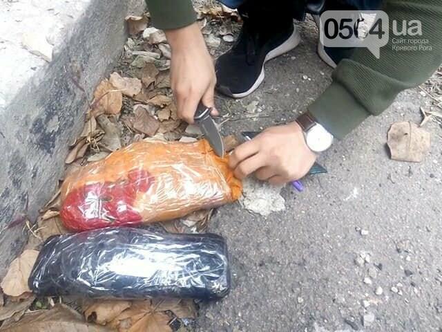 В Ингулецком районе задержали криворожанина с двумя пакетами марихуаны, - ФОТО, фото-1