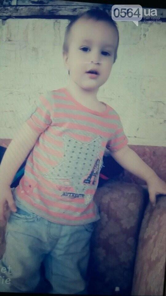 На Днепропетровщине всю ночь искали пропавшего 2-летнего малыша. Нашли утром на дне оврага, - ФОТО, фото-1