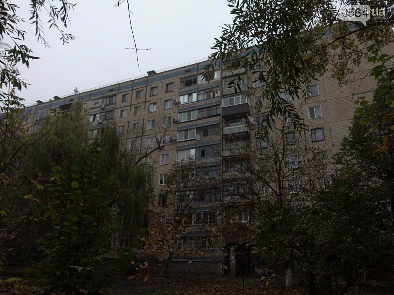 В Кривом Роге из окна 9 этажа выпал мужчина, - ФОТО 18+, фото-11