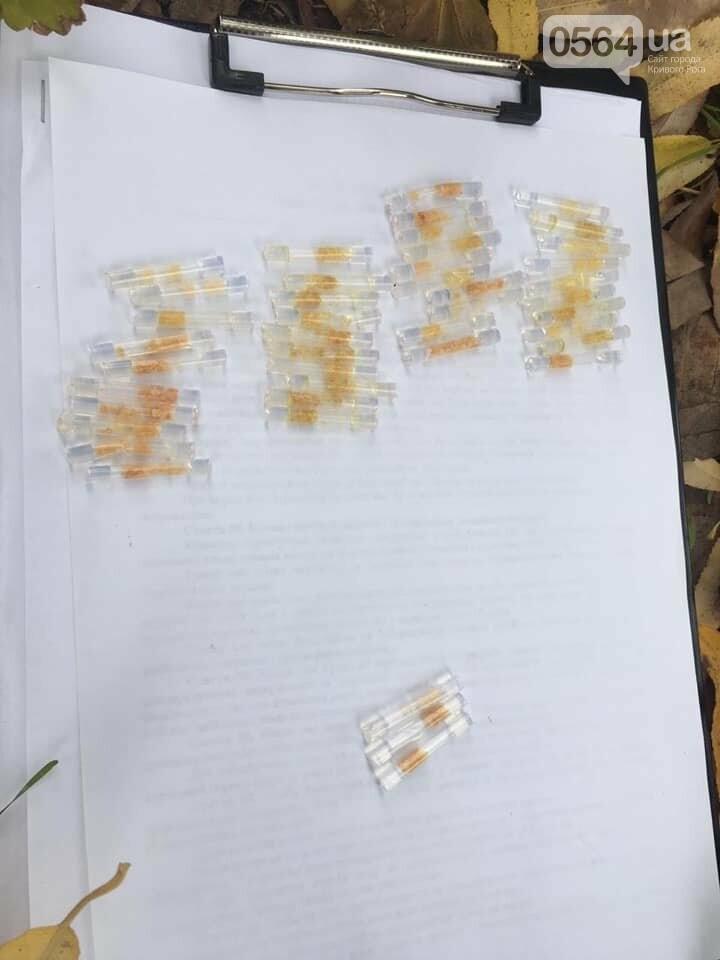 """Криворожанина, у которого нашли 43 трубочки с """"феном"""", проверяют на причастность к наркоторговле, - ФОТО , фото-1"""