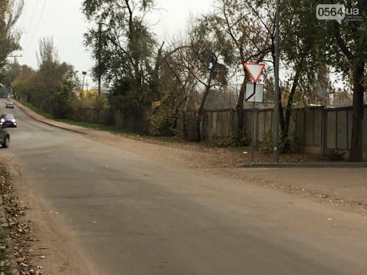 Депутат: в центре Кривого Рога 15 лет незаконно используют участок земли, - ФОТО, ВИДЕО, фото-15