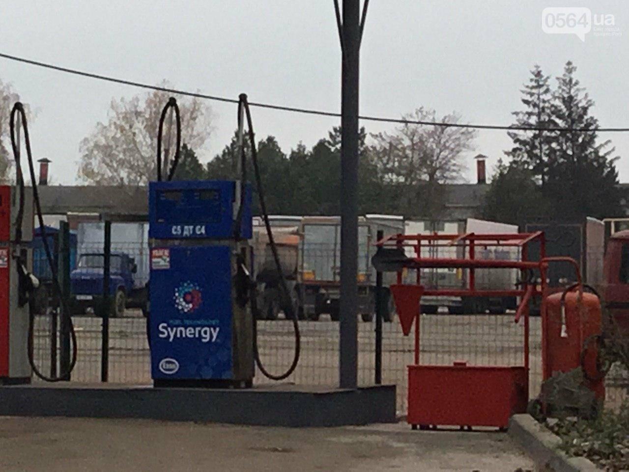 Депутат: в центре Кривого Рога 15 лет незаконно используют участок земли, - ФОТО, ВИДЕО, фото-16