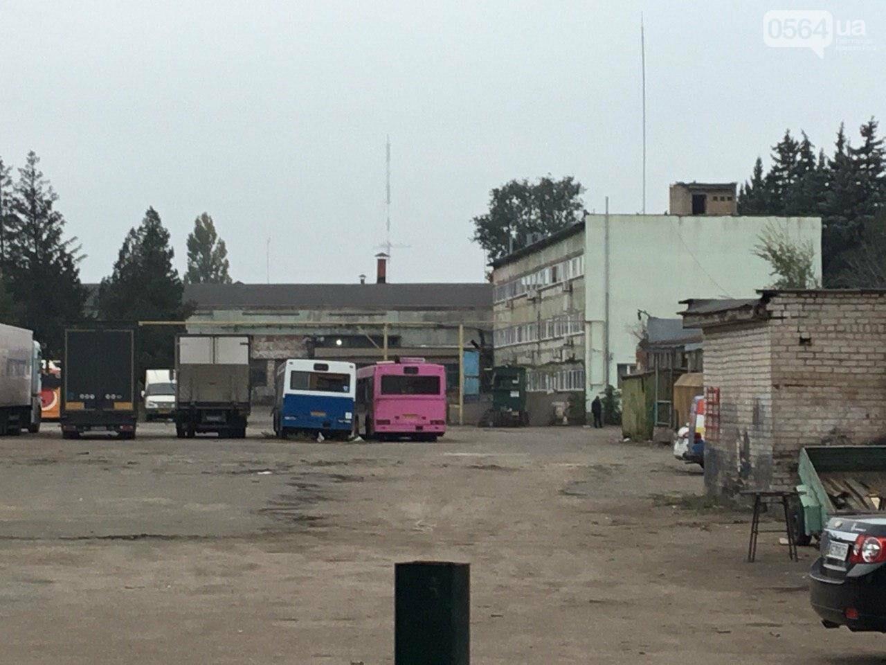 Депутат: в центре Кривого Рога 15 лет незаконно используют участок земли, - ФОТО, ВИДЕО, фото-24