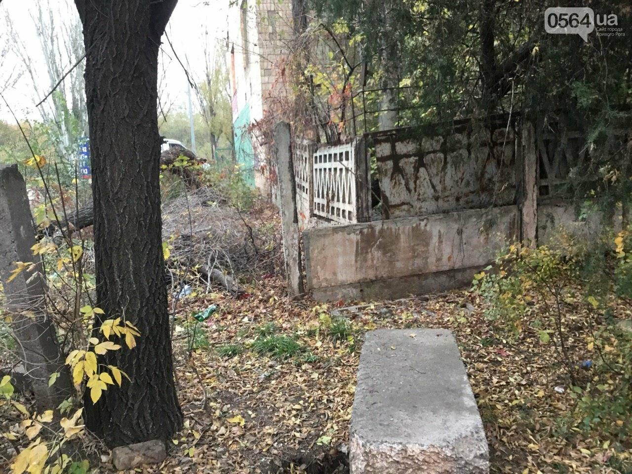 Депутат: в центре Кривого Рога 15 лет незаконно используют участок земли, - ФОТО, ВИДЕО, фото-27