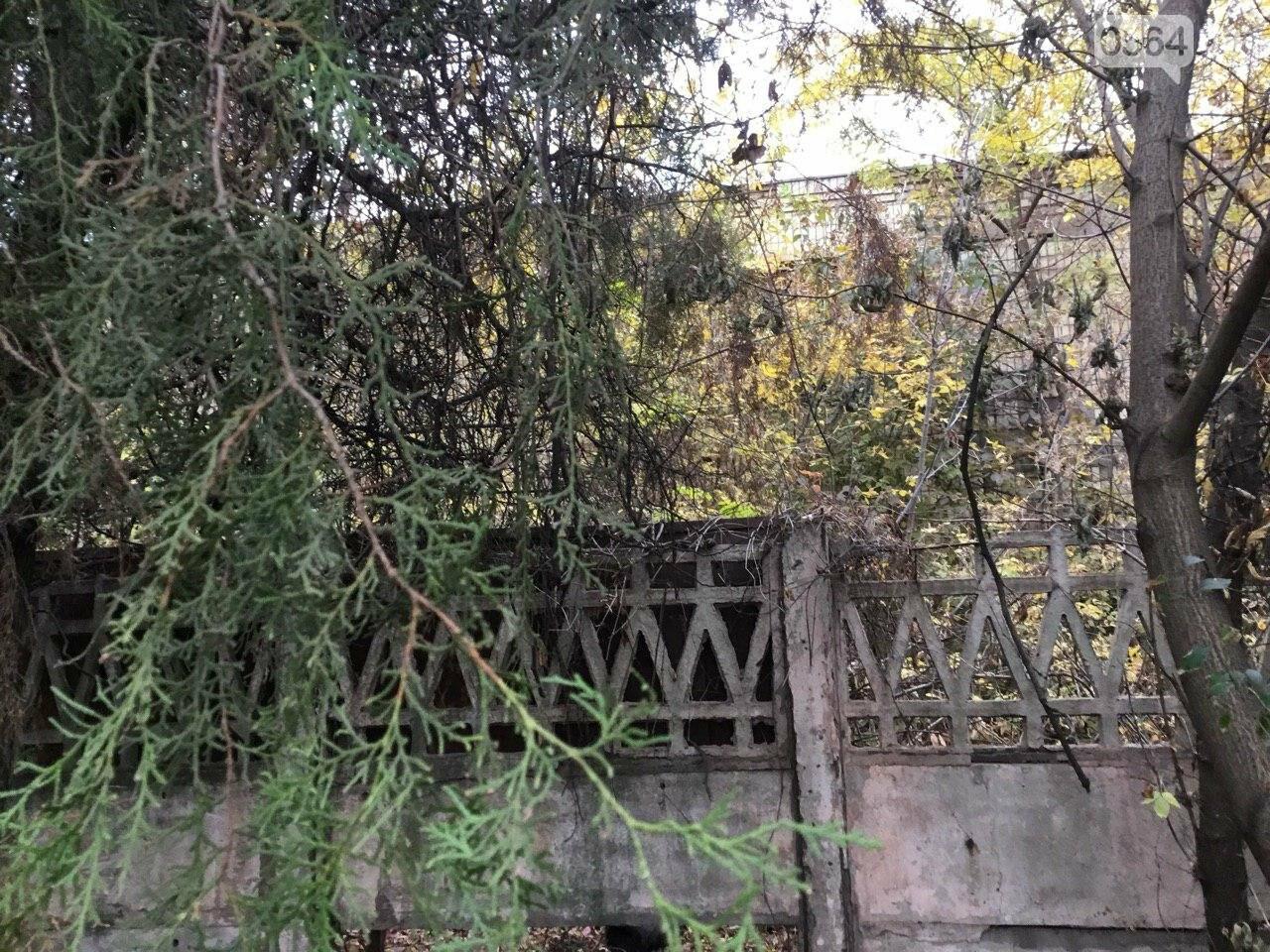 Депутат: в центре Кривого Рога 15 лет незаконно используют участок земли, - ФОТО, ВИДЕО, фото-28