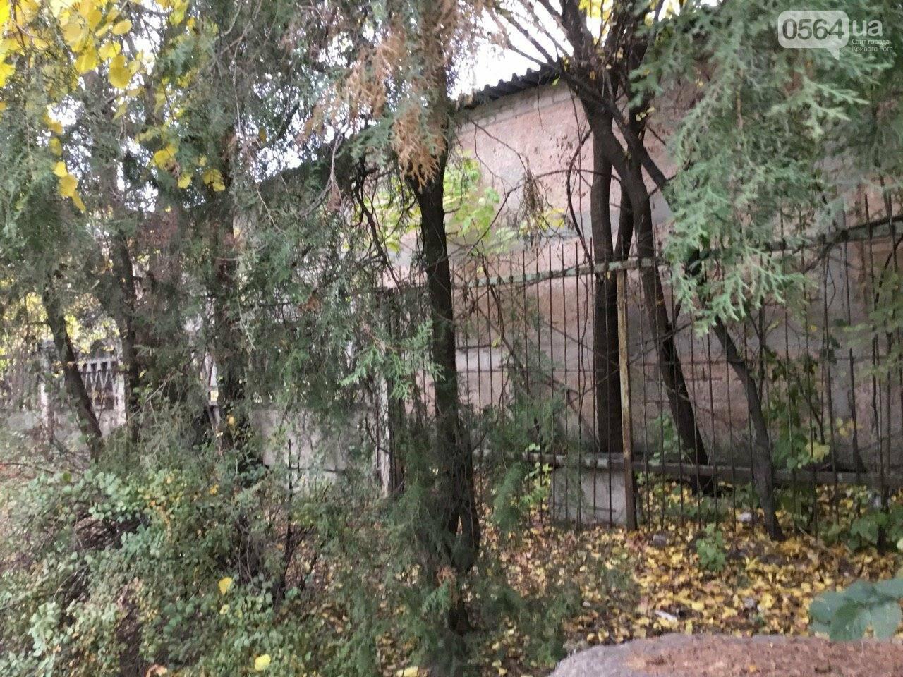 Депутат: в центре Кривого Рога 15 лет незаконно используют участок земли, - ФОТО, ВИДЕО, фото-33