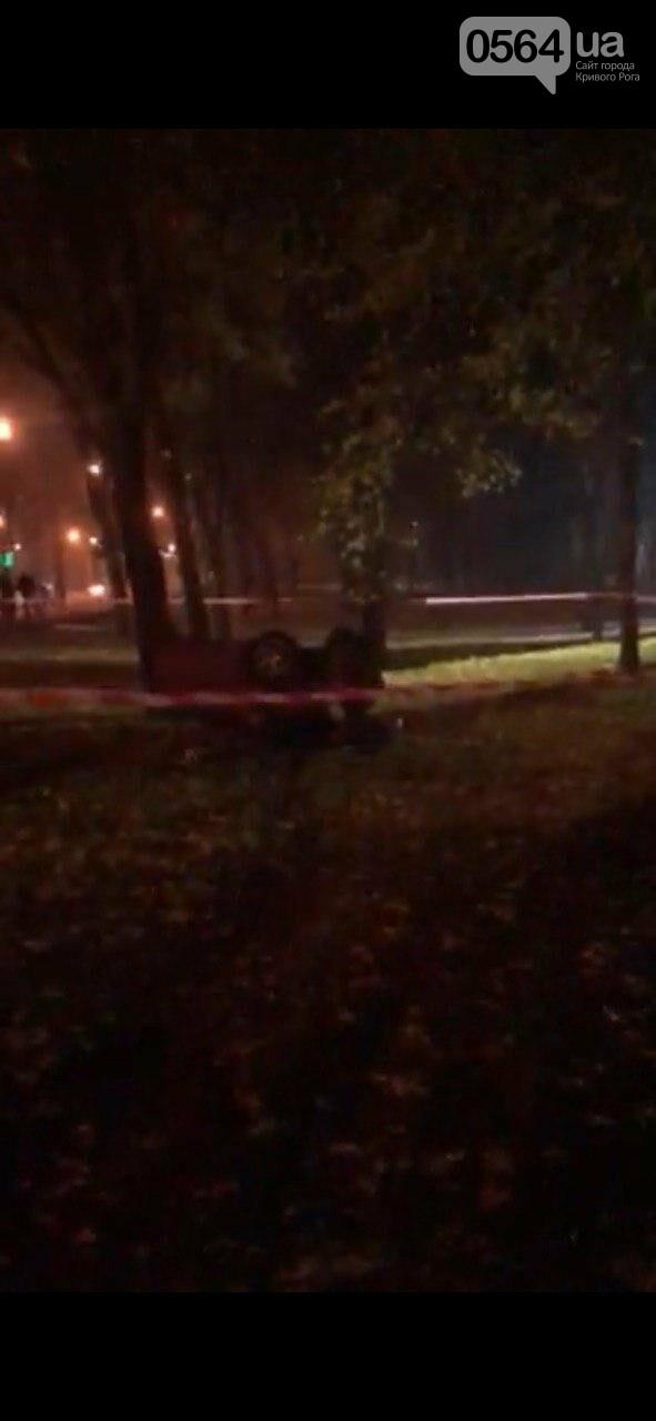 В центре Кривого Рога иномарка снесла фонарный столб и дерево и разлетелась на части, - ФОТО, фото-11