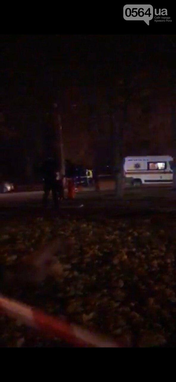 В центре Кривого Рога иномарка снесла фонарный столб и дерево и разлетелась на части, - ФОТО, фото-10
