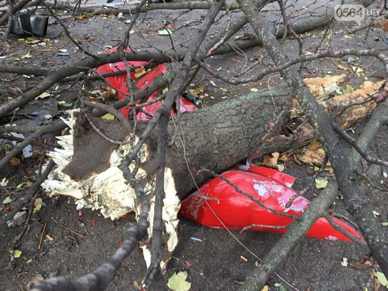 Куски стекла и обшивки разбившейся в Кривом Роге иномарки разлетелись на десятки метров, - ФОТО, фото-18