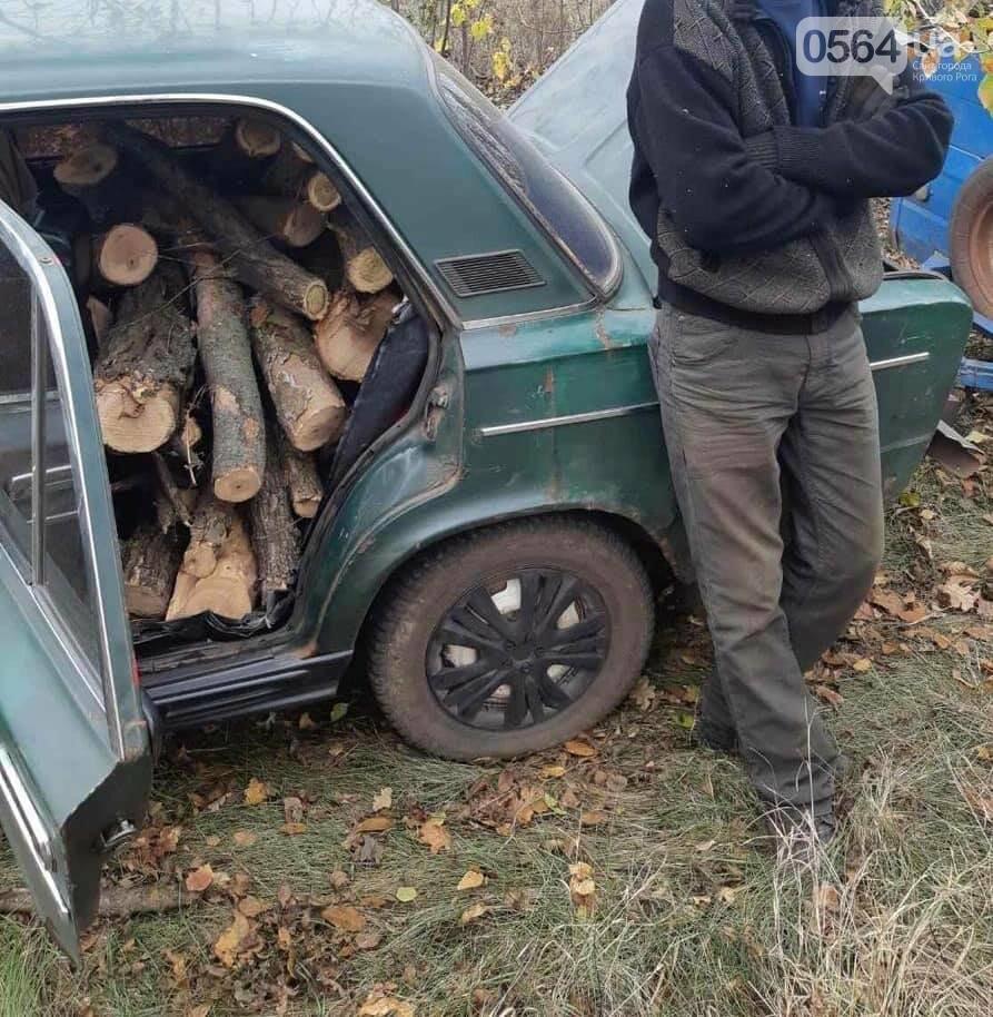 В Криворожском районе мужчина незаконно вырубал акацию, - ФОТО , фото-1