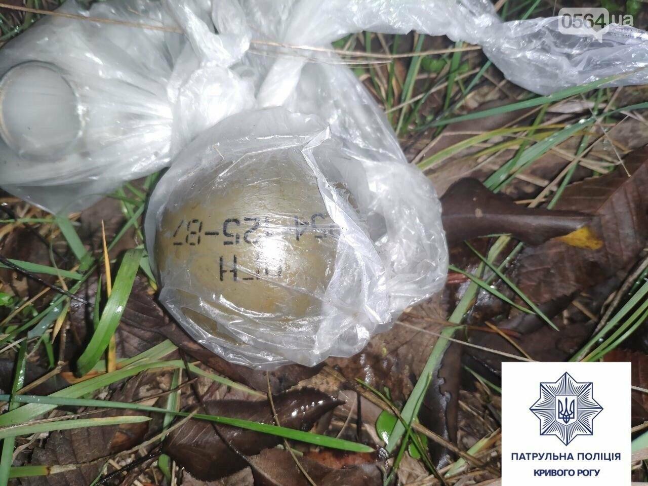 В Кривом Роге возле кладбища обнаружили гранаты, - ФОТО, фото-1