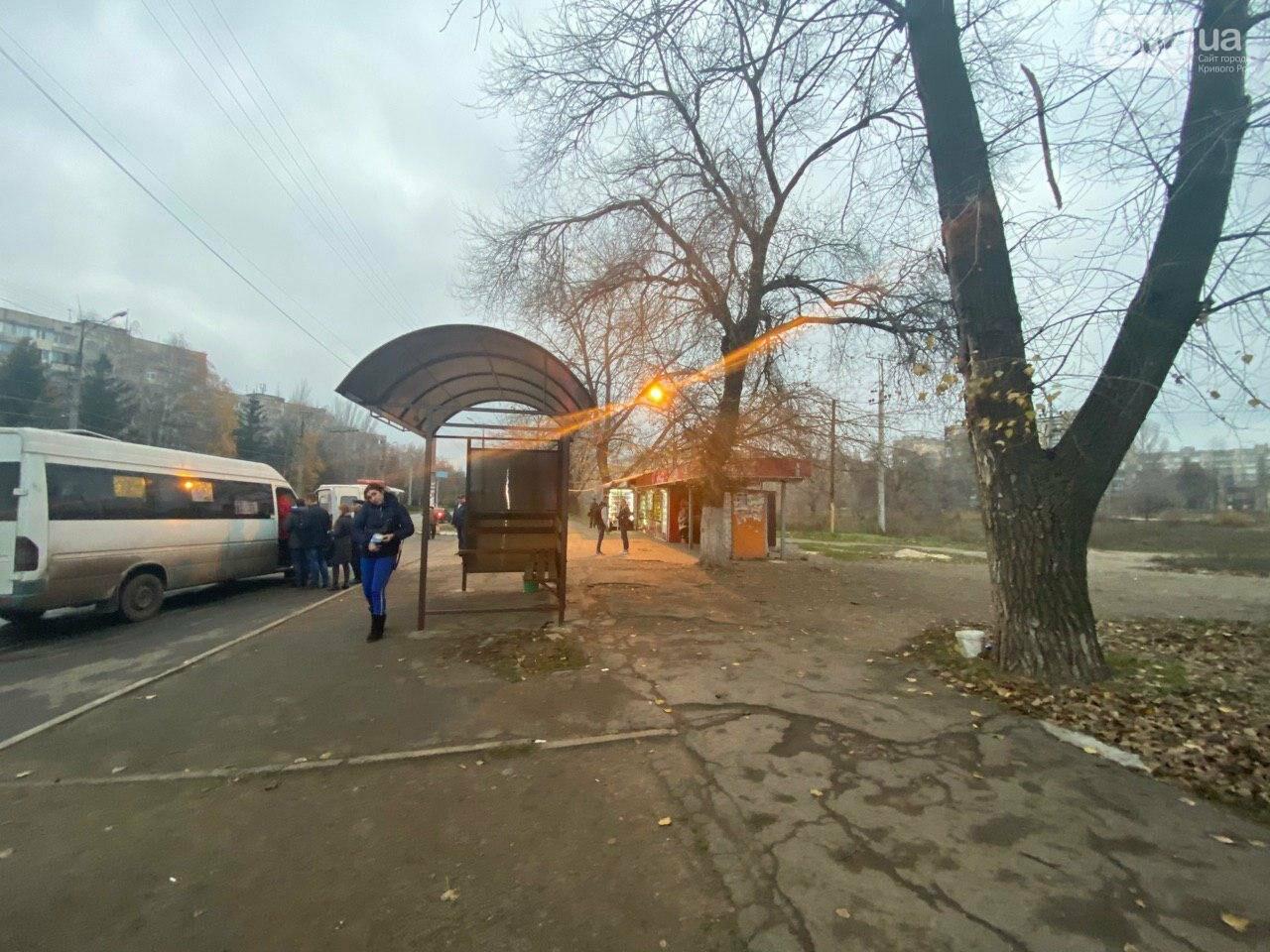 В Кривом Роге предприниматель помогла благоустроить остановку общественного транспорта, - ФОТО, фото-17