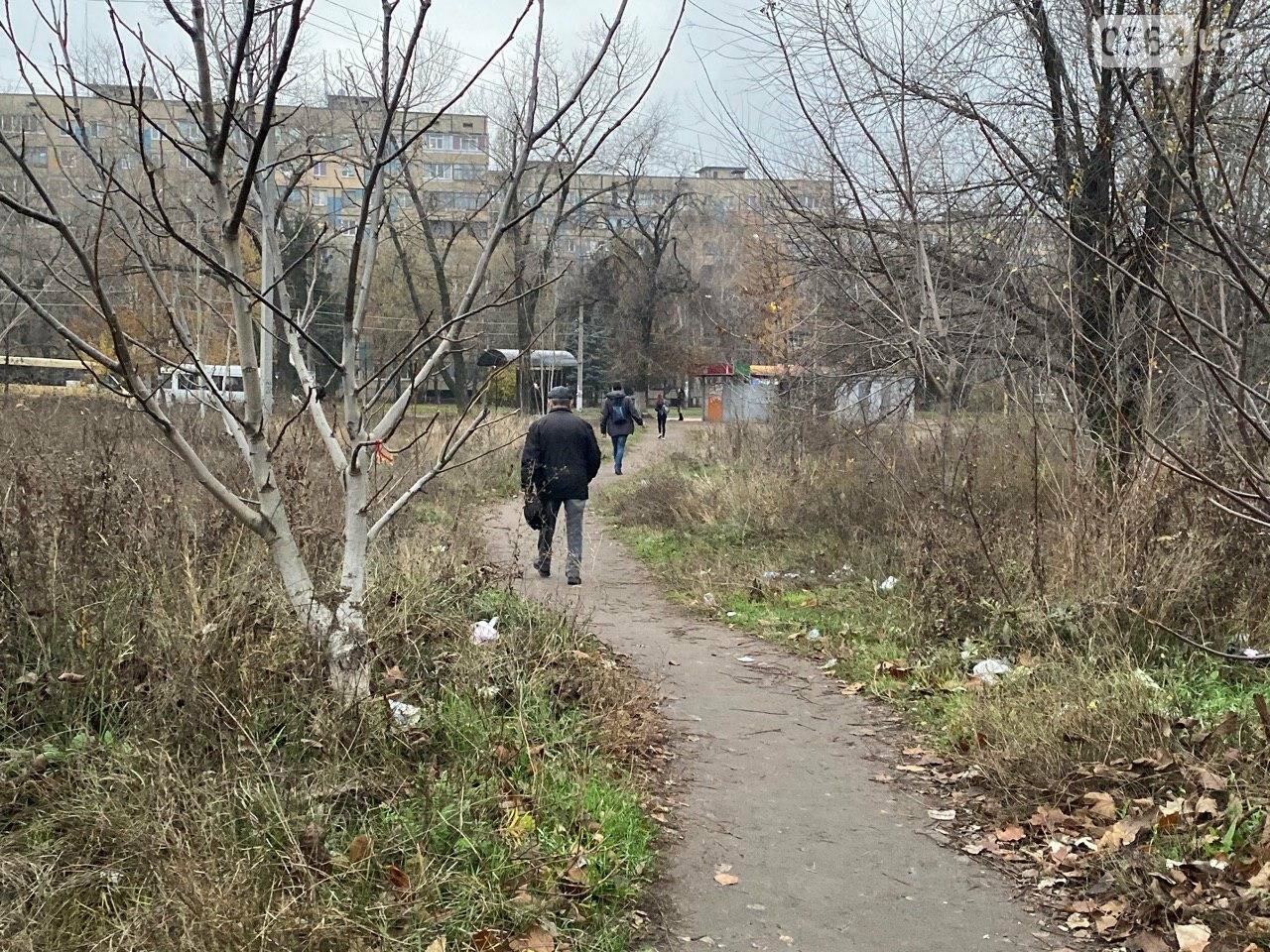 В Кривом Роге предприниматель помогла благоустроить остановку общественного транспорта, - ФОТО, фото-20